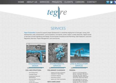 Tegre Corp Website